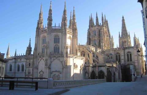 Διαμέρισμα καθεδρικού ναού