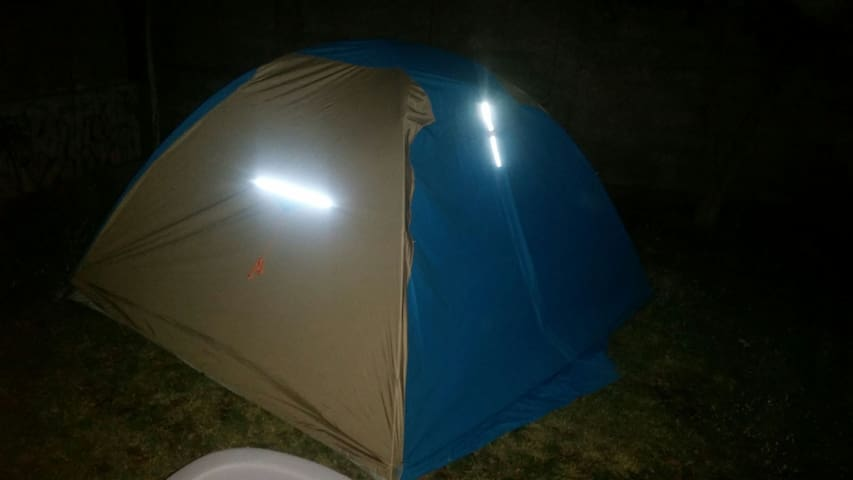 Tent service for local domastic and international
