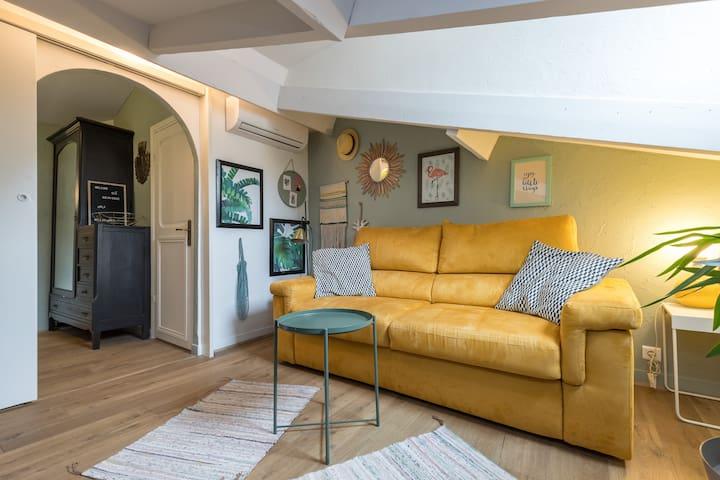 Salon / Chambre 2 Living room / Bedroom 2