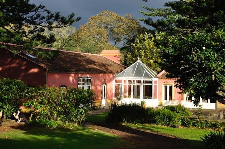 Flora Studio Azores-Nature with Identity