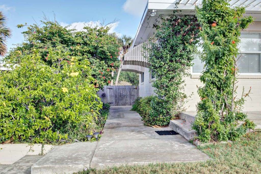Sidewalk leads to private backyard and patio.