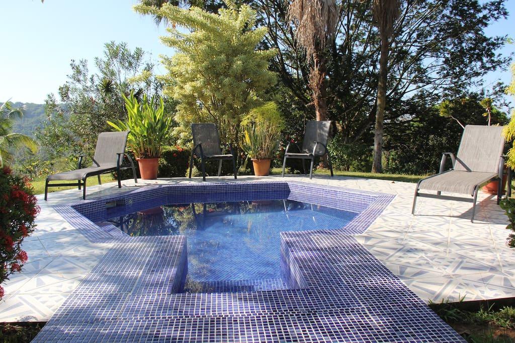 Refreshing plunge pool.