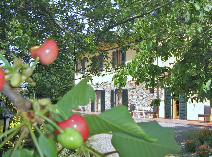 Agriturismo Il Gelso Toscana mare