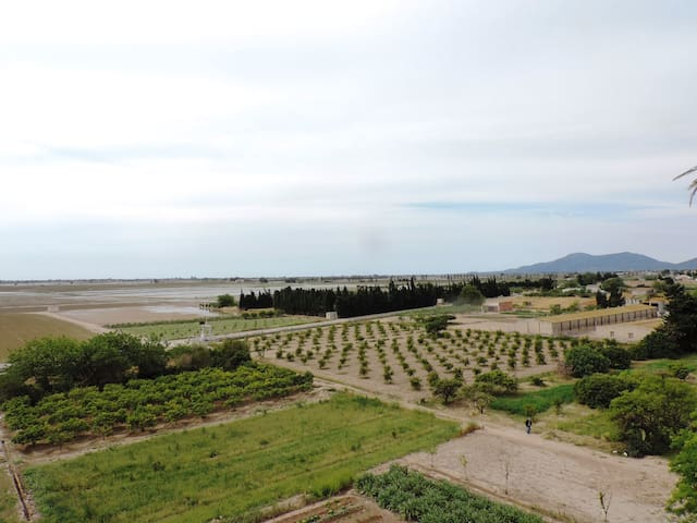 Lovely apartment with spectacular rice field views - Camarles - Appartement