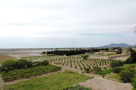Lovely apartment with spectacular rice field views - Camarles - Lejlighed