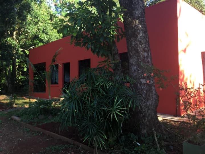 La casa de los cuentos de la selva