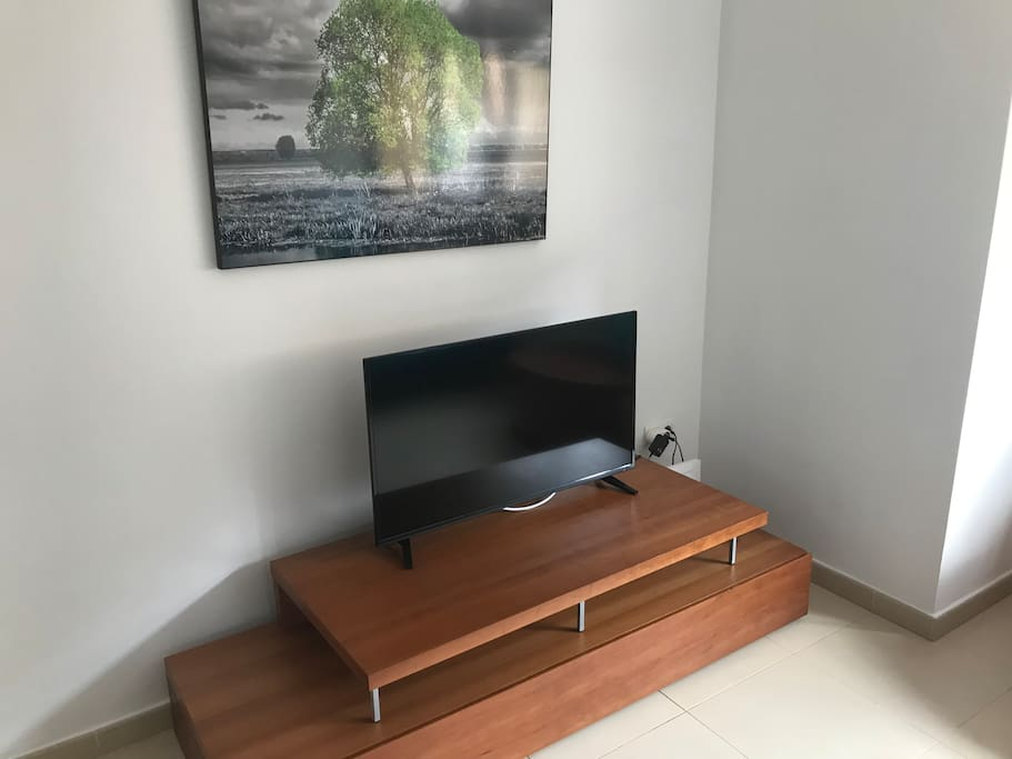 TV with international channels