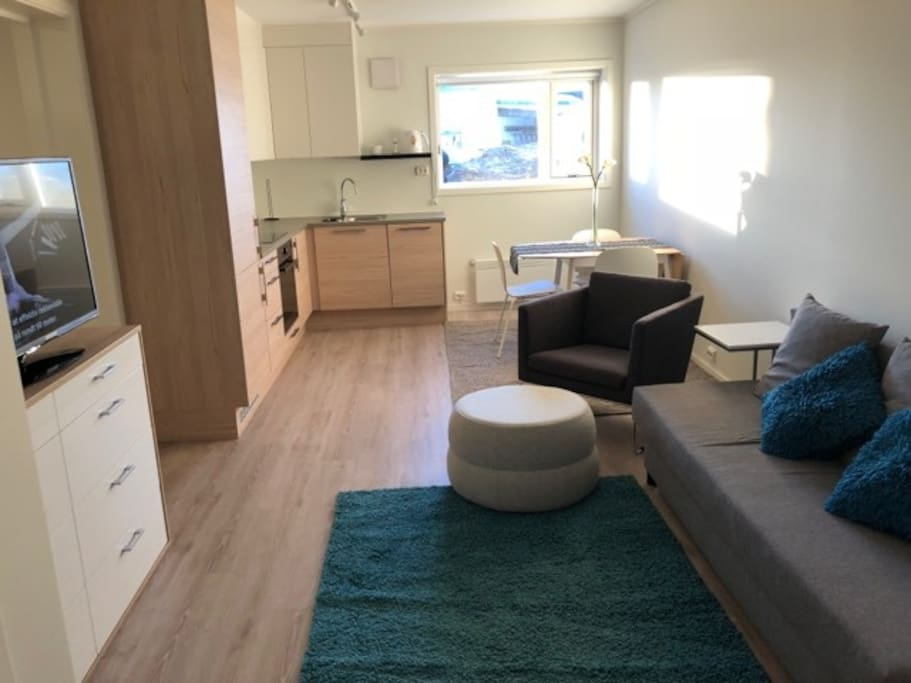 Beautiful studio basement Apartment fully equipped with all you need.