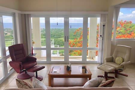 Vista Rincon Penthouse - A View of Rincon