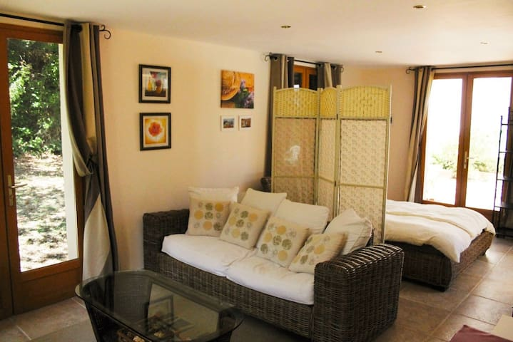 Pool house open plan lounge and 5th bedroom