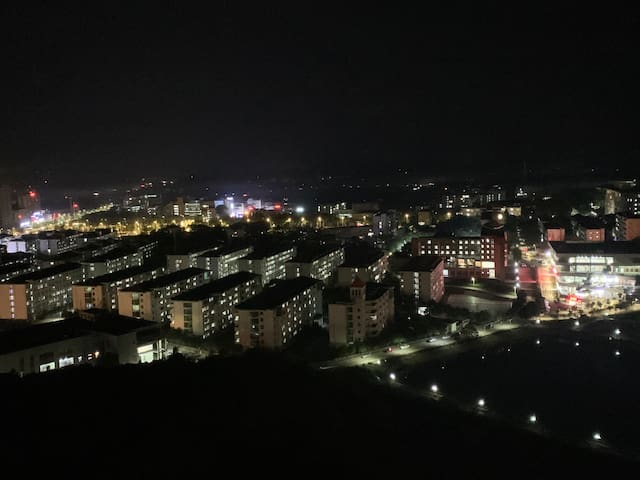 湘潭大学 大学里 一室一厅一厨一卫 独立高层落地窗视野好 俯瞰整个湘大