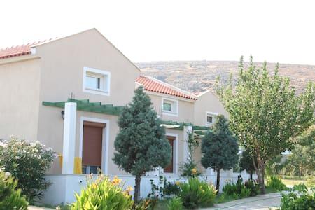 Sigrion Villas, villa #5 - Lesvos - Huis