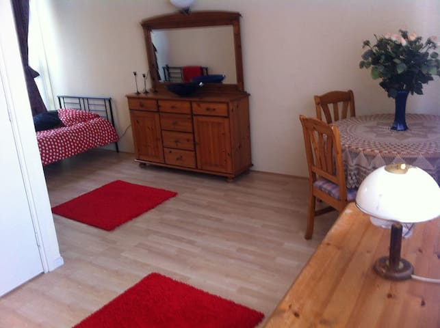 Lovely room, 5 minutes from the city centre - Utrecht - Hus