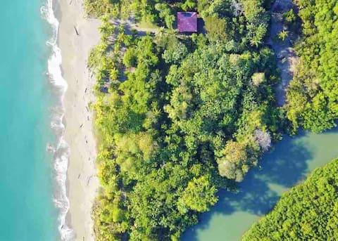 Beach house. Golfo Dulce, mangrove, lagoon, jungle