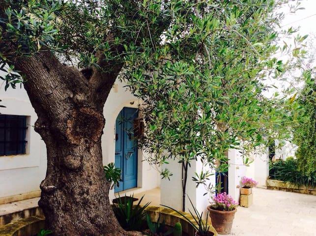 Casa del Maestrale - Casa Vacanze la Pigna