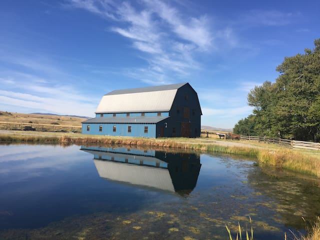 The Blue Barn on Over Yonder Farm