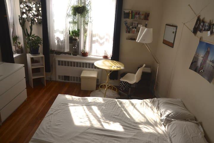 Sunny big room in Queens, 30 min to Manhattan