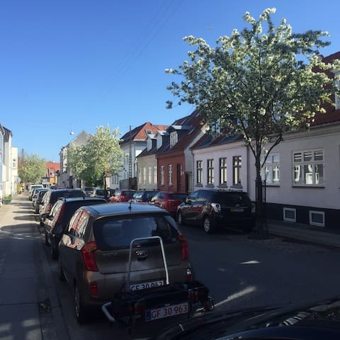 A beautiful and relaxed apartment in central Århus