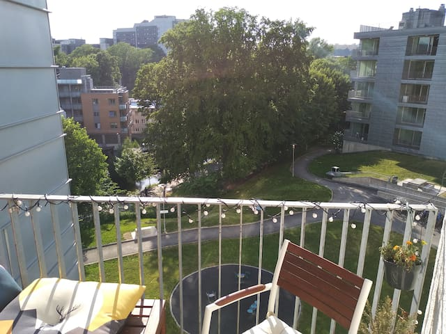 View of the backyard, Akerselva and beyond.