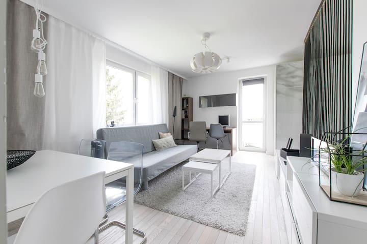 Sunny modern studio