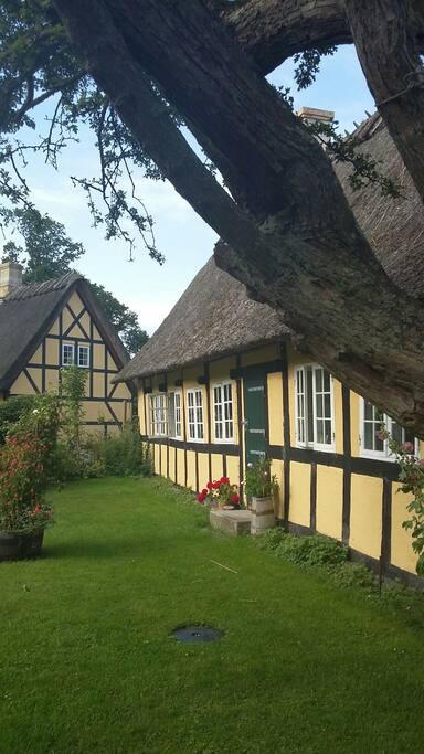 Bines Hus fra havesiden i solskinsvejr