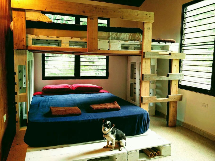 This is the bedroom for groups of 4, the lower bunk has a queen mattress and the upper bunk is a Queen sized airbed. (Dog not included)