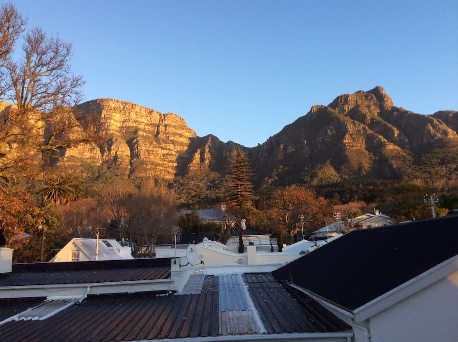 View of Table Mountain from roof top terrace