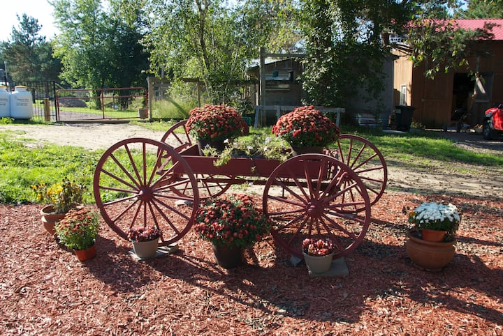 Red Wagon Farm Guest House