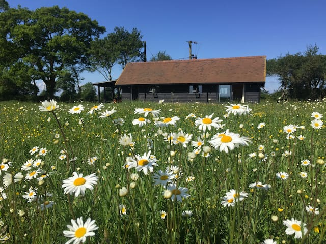 The Barn at Willow Cottage - Wild Flower Meadow