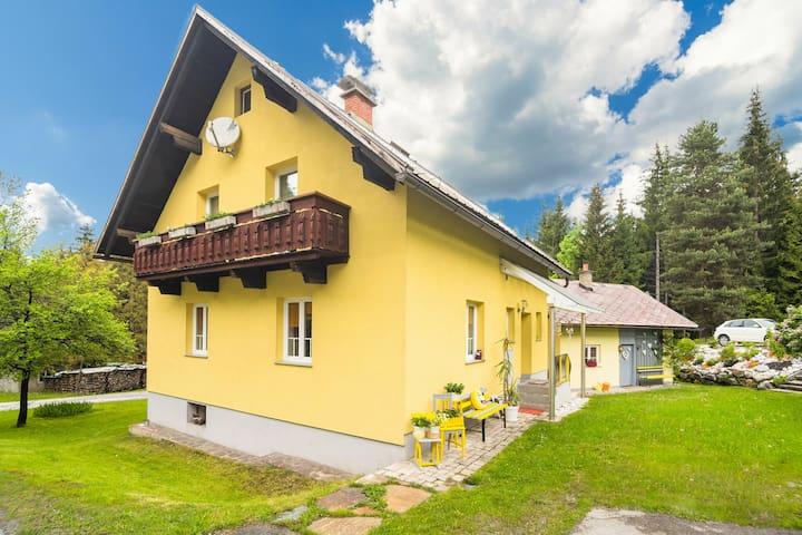 Spacious Holiday Home in Tröpolach near Ski Area