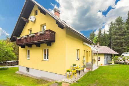 Spacious Holiday Home in Tröpolach near Ski Area