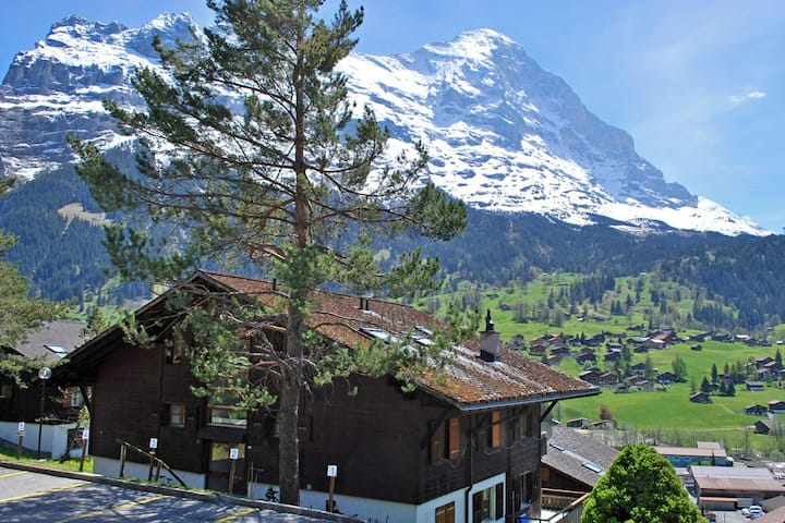 Studio in Charming Chalet, Magnificent Eiger View!