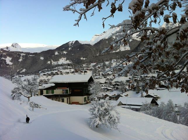 Chalet Gletscherbach - Grindelwald - Haus