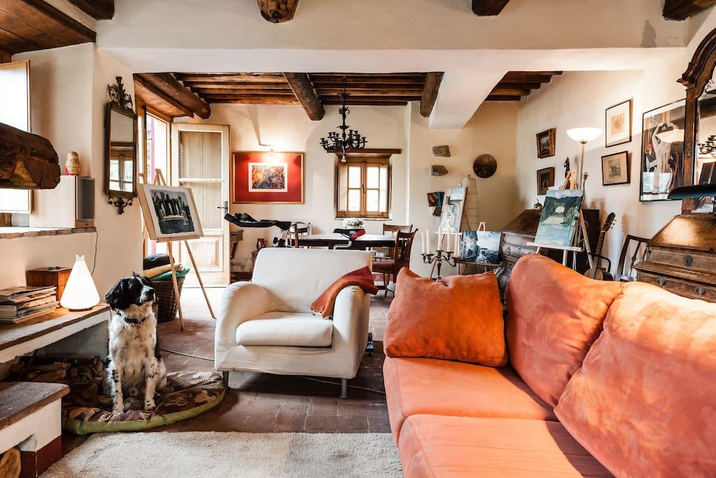 woonkamer( bij slecht weer te gebruiken) en de hond.