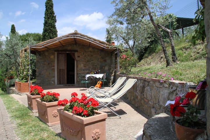 Toscana classica: paesaggio, arte, relax e .. vini