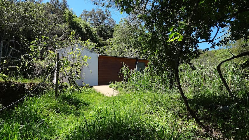 Casinha da Fonte – quiet, close to nature, rustic