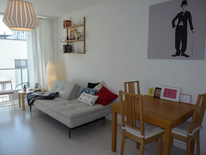 Very bright and warm apartment in Vilnius Center!