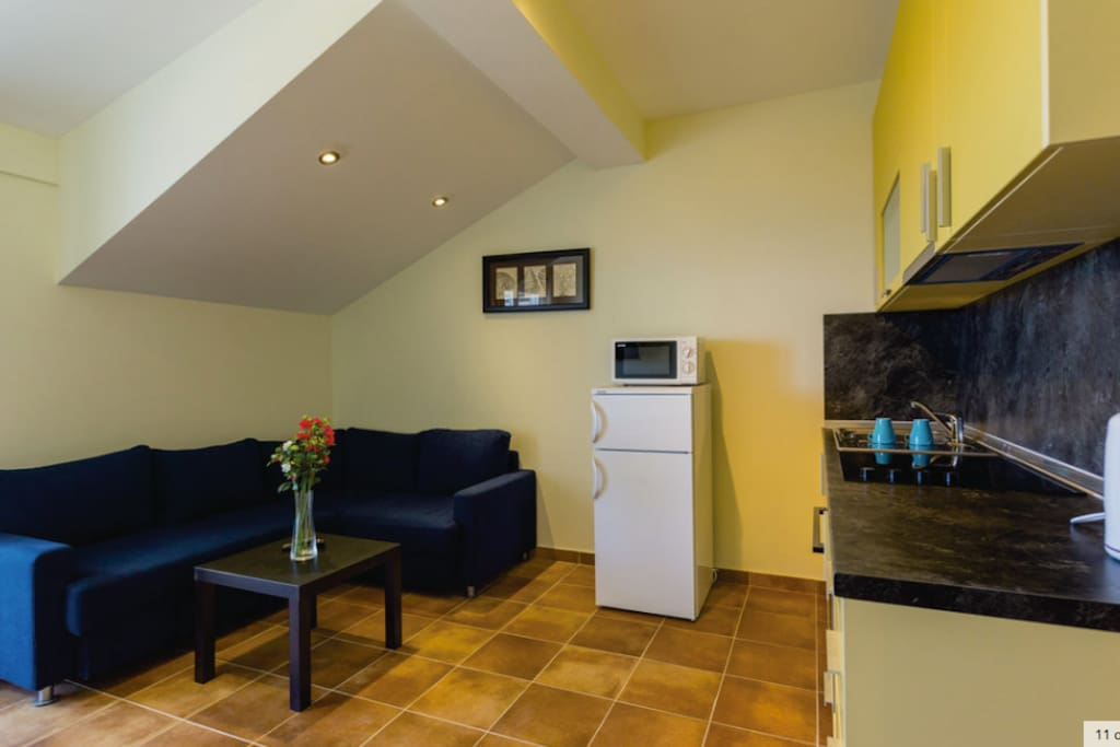 Sofa bed, fridge & microwave
