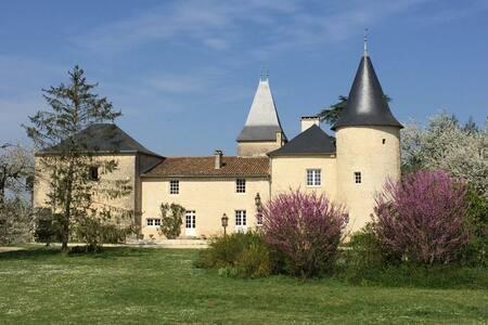 Château de Monteneau