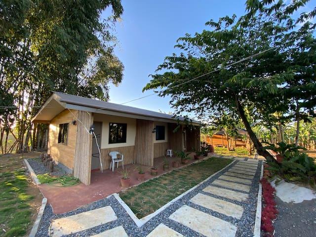 NEW Happy Mampy Dahilayan Bed&Breakfast room