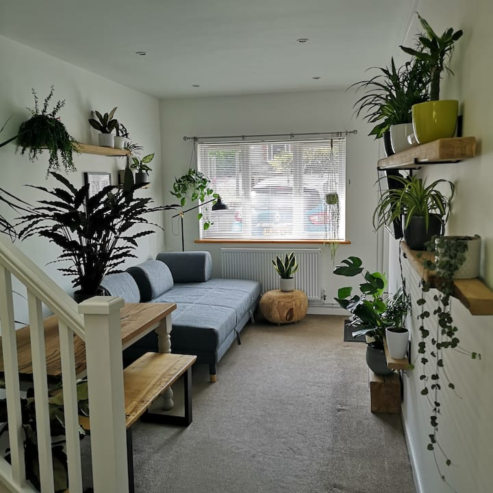Weymouth house, full of plants and near the sea
