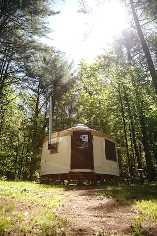 Go Deeper with a Cozy Yurt Retreat!