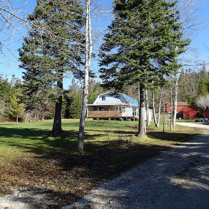 The property includes a blue/gray cabin and three red sheds.