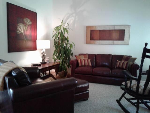 Living room, vaulted ceiling, Smart TV/Bluray