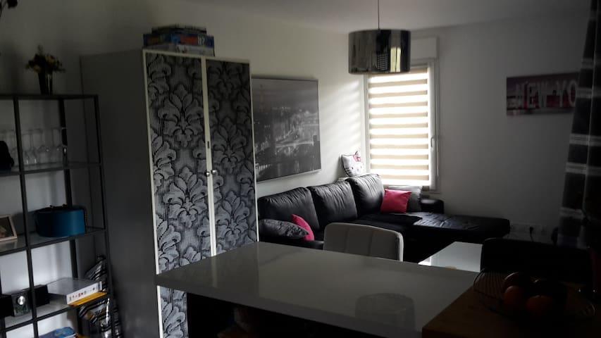 CHARMANT APPARTEMENT T2 à 20 mn de DISNEYLAND - Lognes - Apartament