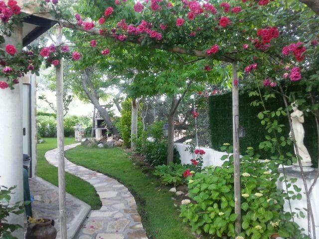 Casa Rural Minuto / Sierra de Gredos - San Juan de la Nava - Casa