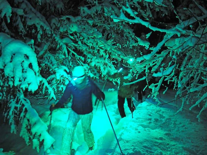 Nacht Schneeschuhwanderung buntes LED