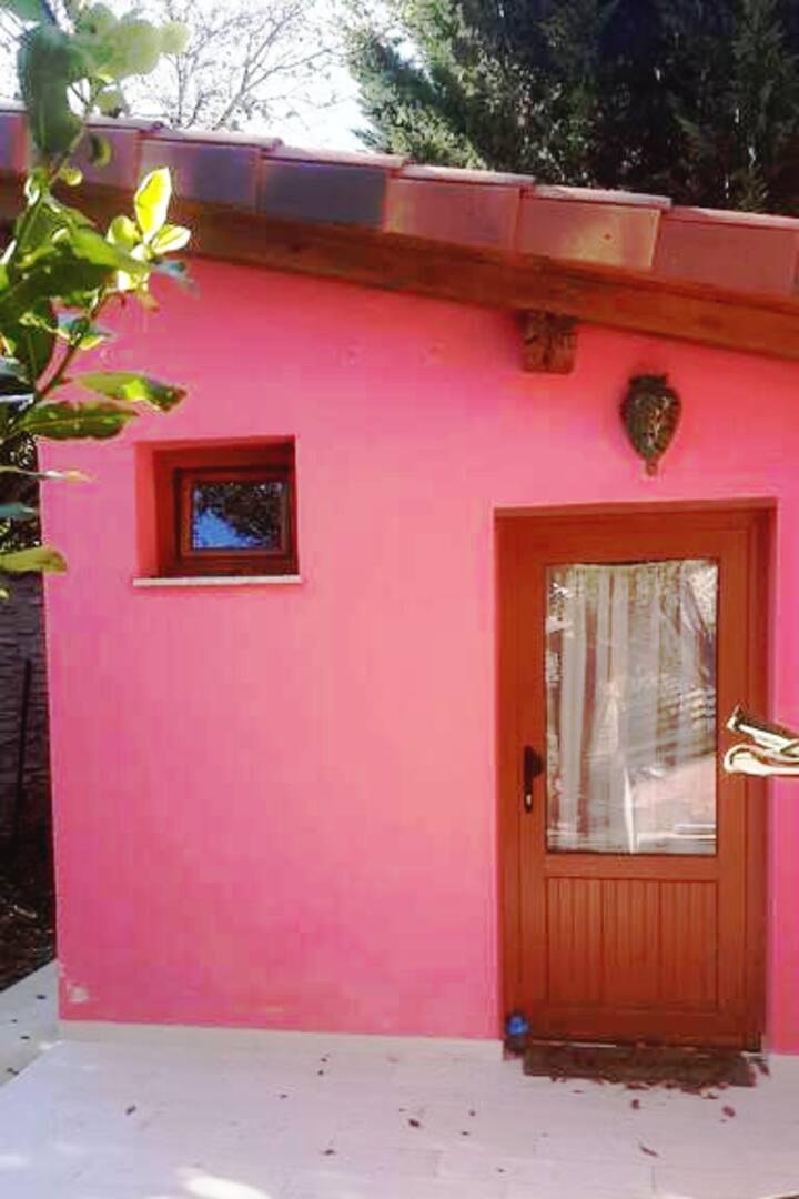 Estudio/Habitacion con baño, mini cocina, jardin
