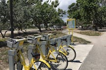 Bikes for rent at the park and also by the villas at the bicycles store