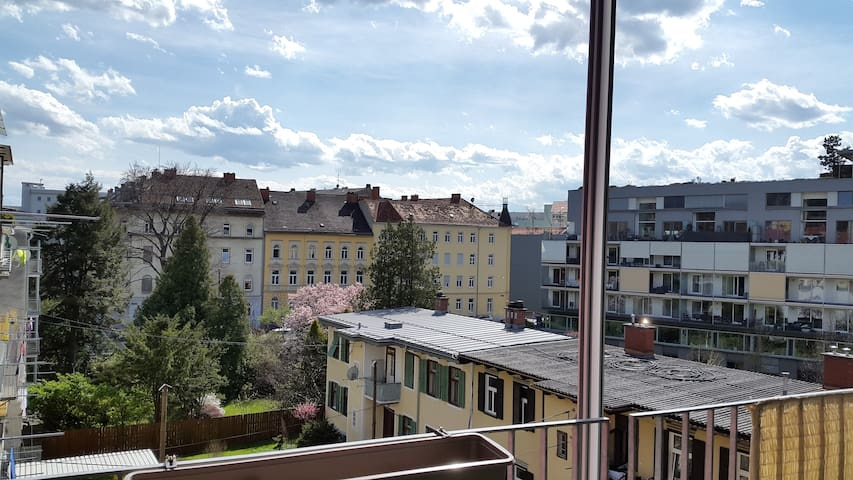 Nice room in modern flat in the heart of Graz - Graz - Appartement